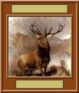 Elk Unfinished Award
